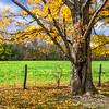 Anderson Falls Nature Preserve
