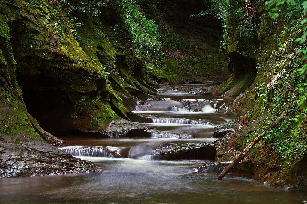 Fall Creek Gorge Nature Preserve