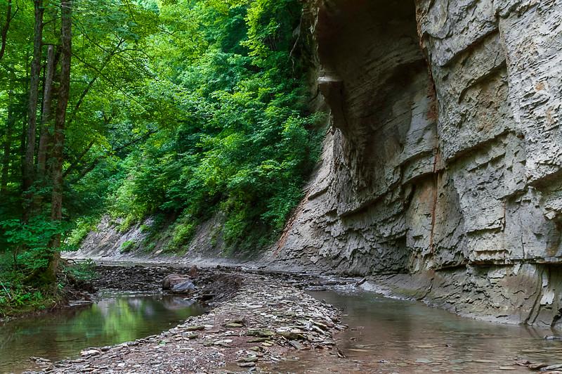 Pine Hills Nature Preserve - Honeycomb Rock