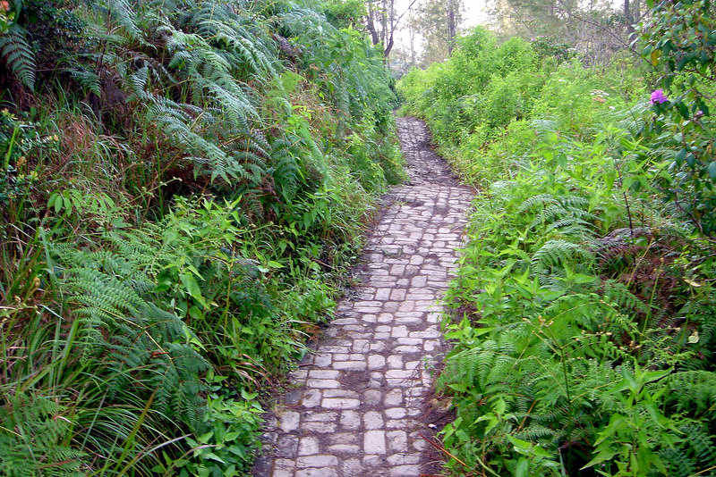 Cobbled Path to the summit of XXX Volcano, Flores Island, Indonesia