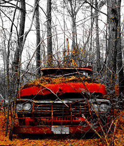 Rusty_Red_Truck_141-1