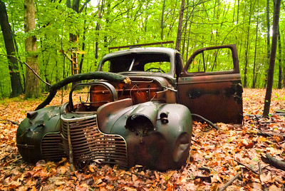 Deer_and_Old_Car_017-34