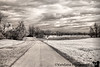 March 13, 2010 - The road in IR