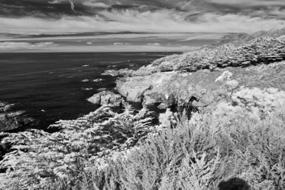 Big Sur Weekend in Infrared - November 26 - 28th 2010