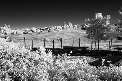 Los Altos Hills Pathways - November 9th 2014