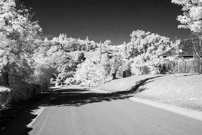 Rancho San Antonio, Mary Stutz trail - November 2nd 2014