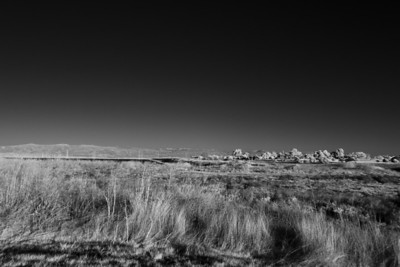Shoreline Park - November 25th 2011