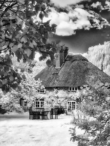 Fantasy Cottage