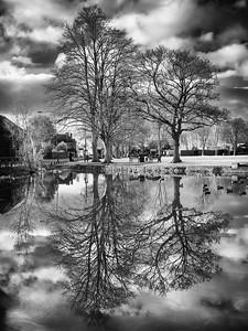 Village Pond, Harefield