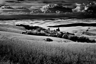 The Palouse in IR 2009