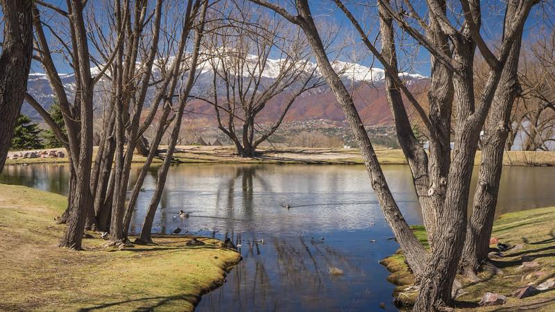 pond w-pikes peak-00658