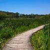 Moraine Hills State Park - McHenry, Illinois
