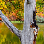 Clinton Lake -De Witt, Illinois