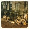 Wemyss Place residents can't quite clean up their act. Bin men don't work Saturdays !  (at Wemyss Place Edinburgh)