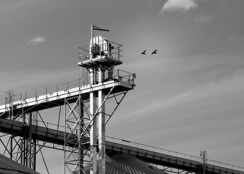 Vol au-dessus d'un nid de silos