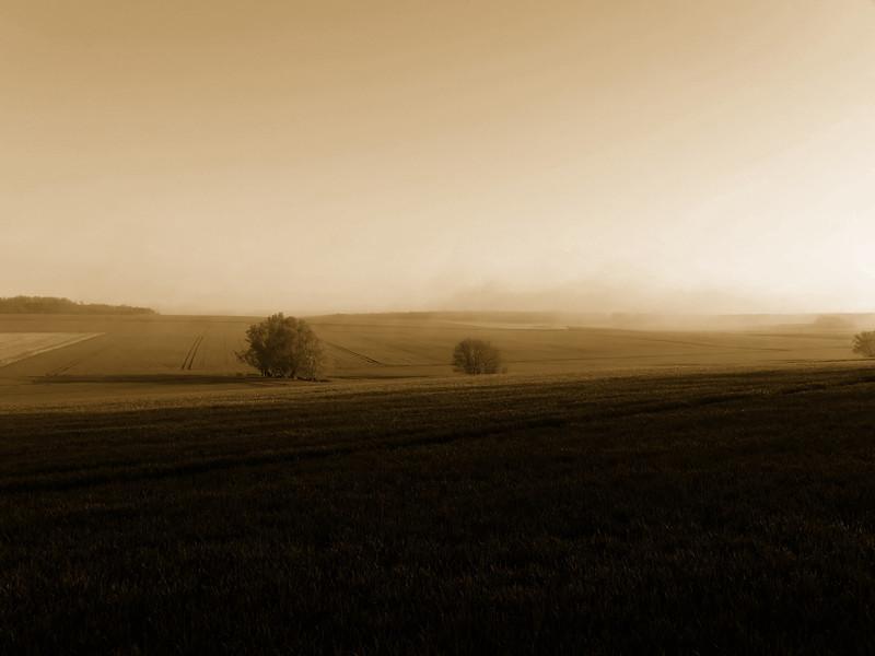 Matin brumeux d'avril, plaines de Beauce
