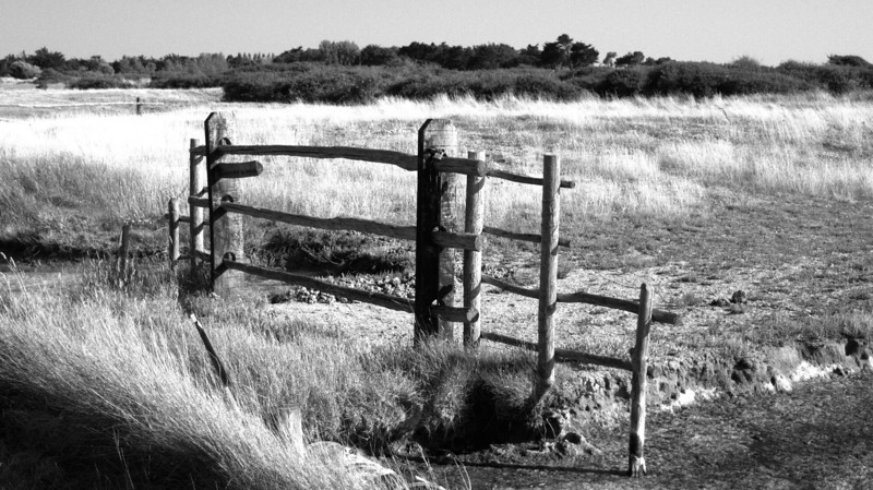 Les marais en pays de Retz
