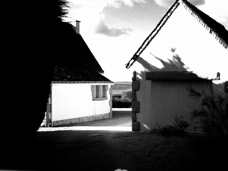 Sur la côte sauvage, près de Port Navalo, Morbihan(56)