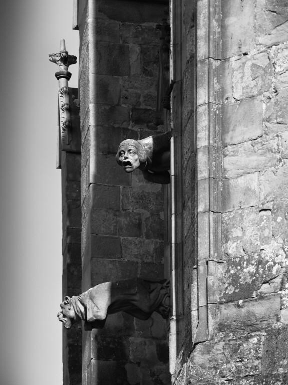 Les gargouilles nous observent. Cité de Carcassonne