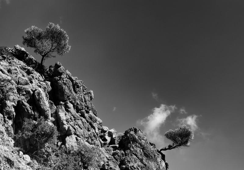 Crète - Sommet des gorges de Zakros