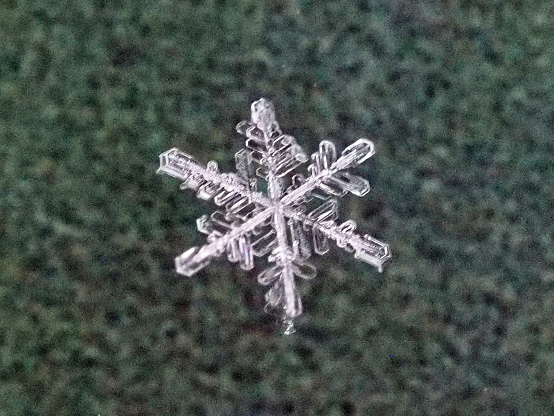 A snowflake from the winter of 2013-14