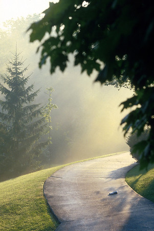 Early foggy sunrise over a driveway on which rests a morning newspaper.