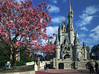 MAGIC KINGDOM DISNEY, FLORIDA