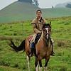 HorsesKona_40crop