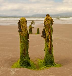 Rossbeign beach