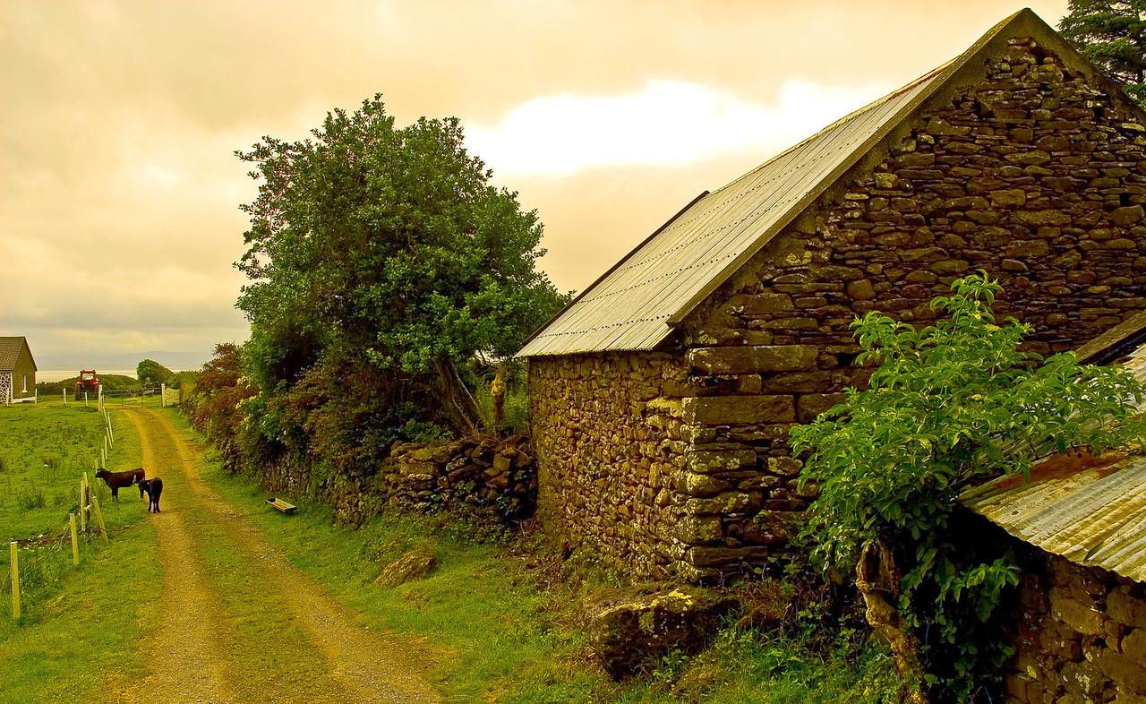 Irish Barn II