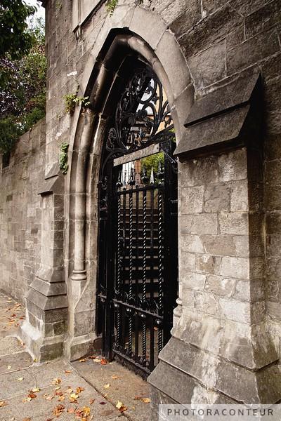 Marsh's Library Gate
