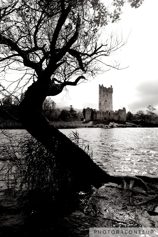 Ross Castle Lakeview