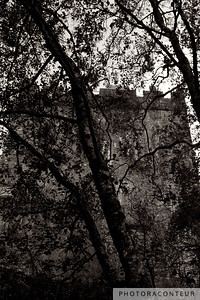 """Castle through the Leaves"" ~ Aughnanure Castle amongst silhouetted foliage in County Galway, Ireland."