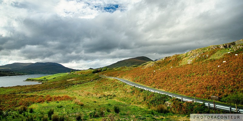 Killary Countryside