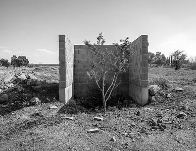 Golan Heights 2014