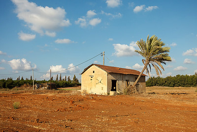 Farmland near Hadera 2014