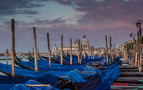 Venice - early morning gondolas near San Marco.