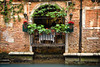 Restaurant Window - Venice