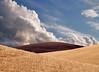 Harvest Contrast<br /> The Palouse<br /> Washington, USA