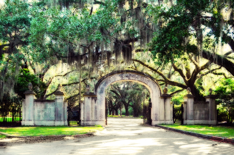 Wormsloe Plantation<br /> Savannah, GA
