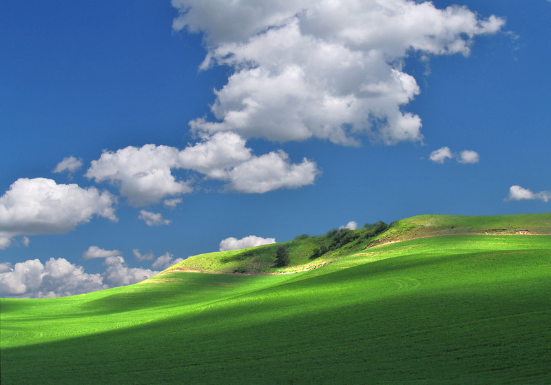 Field of Dreams<br /> The Palouse<br /> Washington, USA