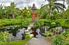 Peaceful Pagoda