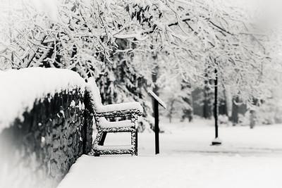 snow14-nov17-13