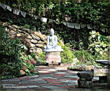 Meditation Garden, Friday afternoon