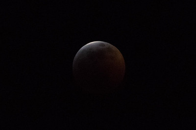Sirby01202019 Moon (58)