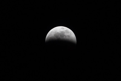 Sirby01202019 Moon (37)