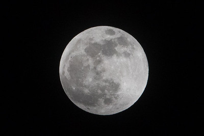 Sirby01202019 Moon (12)