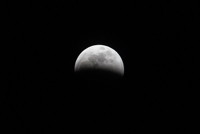 Sirby01202019 Moon (36)