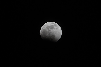 Sirby01202019 Moon (25)