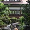 Temple kitty at Ishiteji, Matsuyama.